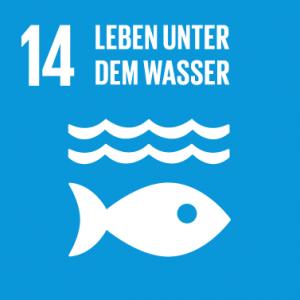 Nachhaltige Entwicklung der Meere