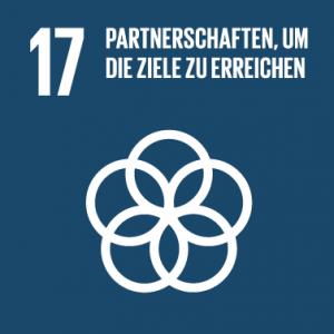 SDG 17 - Globale Partnerschaft
