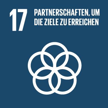 SDG17-Partnerschaft