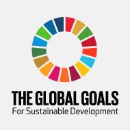 Die SDGs
