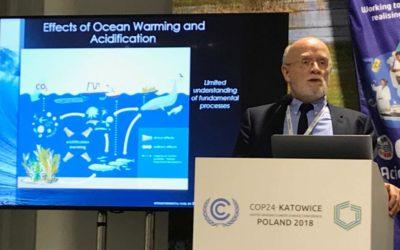 Ozeanversauerung – eine große Gefahr für Ozeane und die gesamte Menschheit