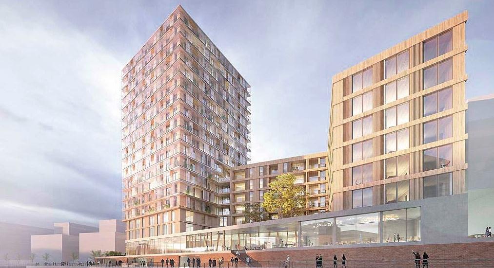 Zukunftsdialog: Baubeginn für Hamburgs erstes Holzhochhaus