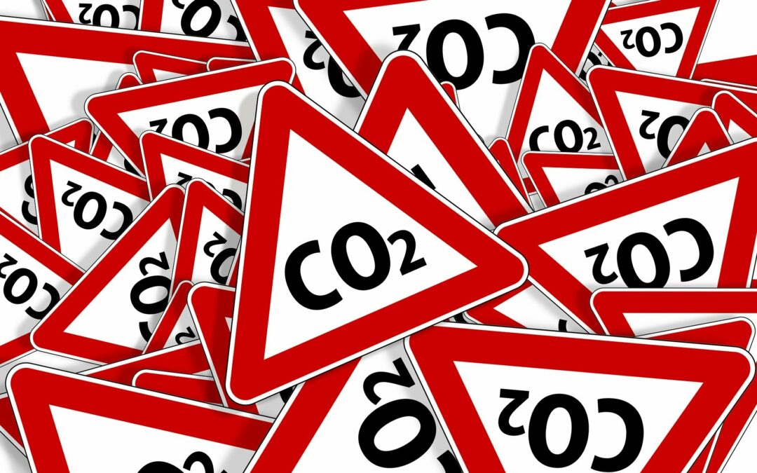 Bürgerrat Klima stellt Ergebnisse vor